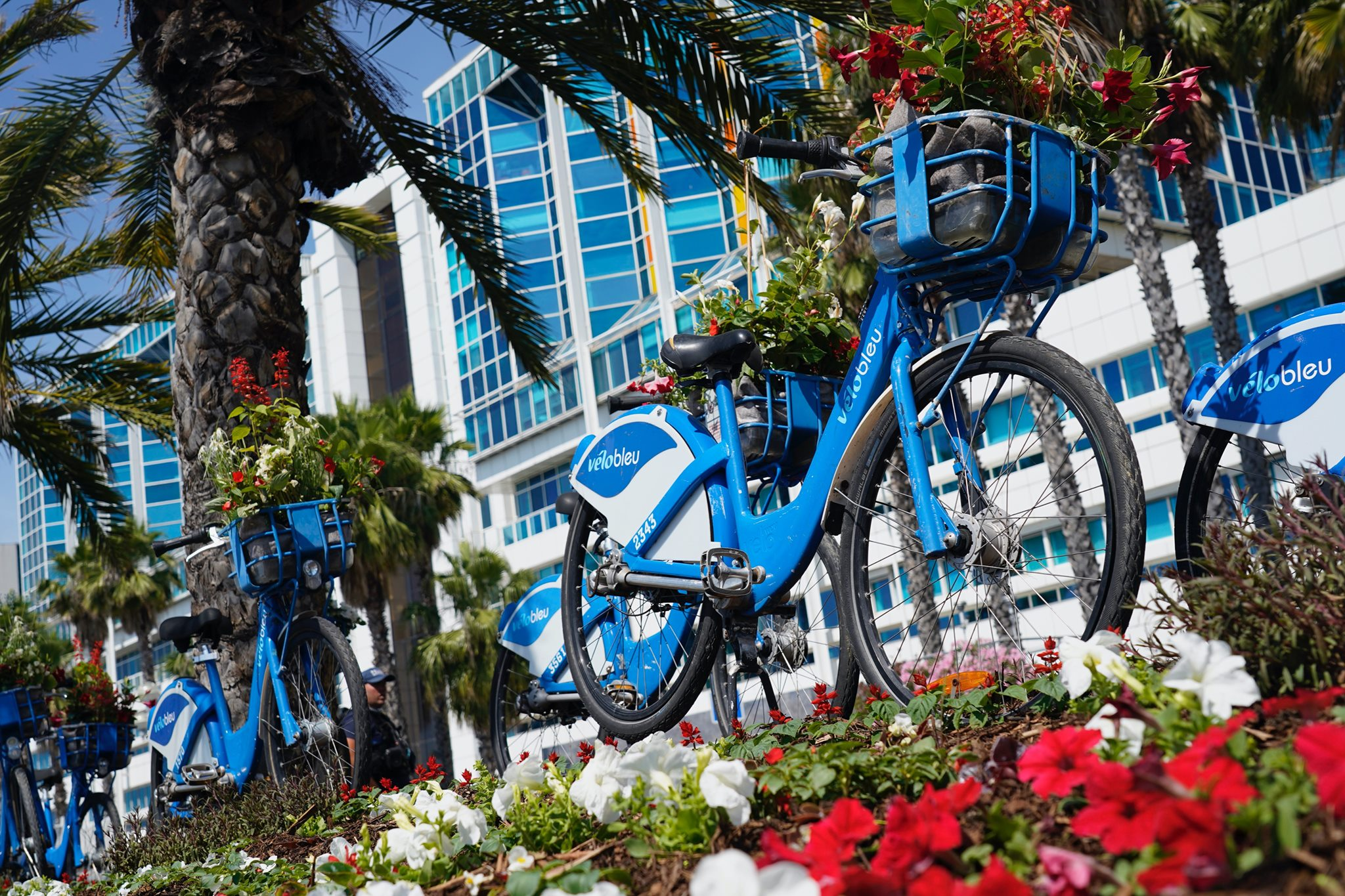 Explore the French Riviera by bike - Credit Nice Cycling Paradise