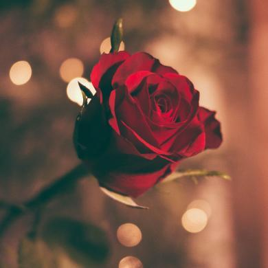 Collection Bagatel - Romance