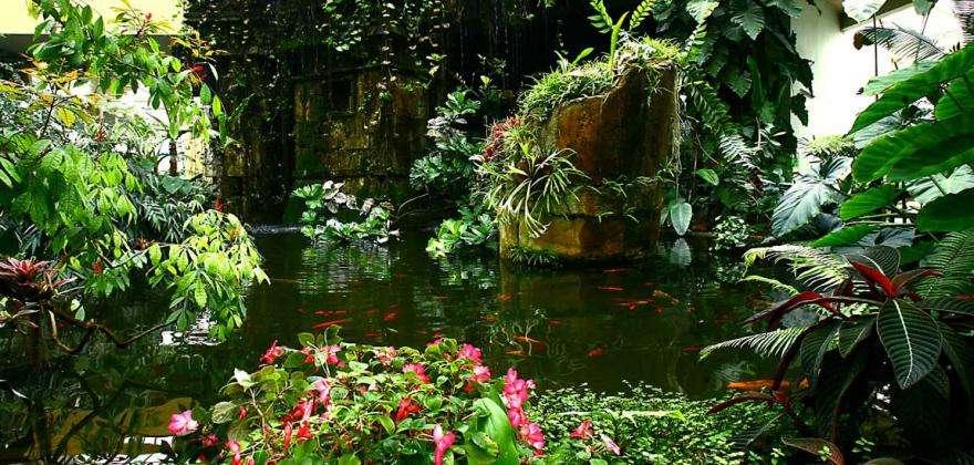 5 incroyables jardins et parcs à découvrir à Nice