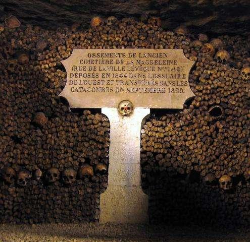 Paris underground : visit the Catacombs