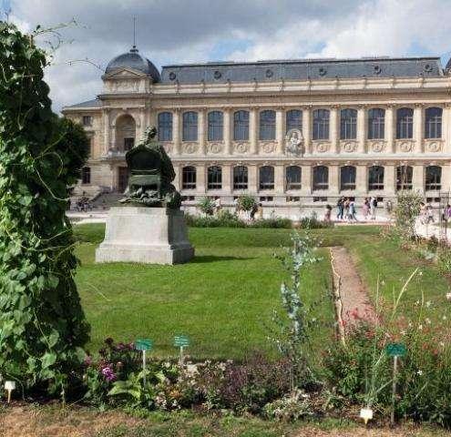 Jardin des Plantes Paris : la science en ses jardins