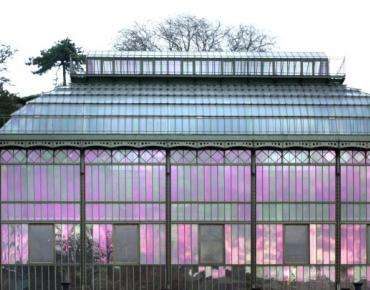 Mille & une orchidées - Jardin des Plantes