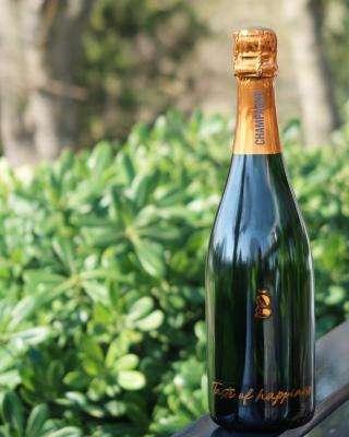 Champagne Gusté MAISON