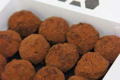 Truffes Chocolat - Gusté LE LAB - Hiver