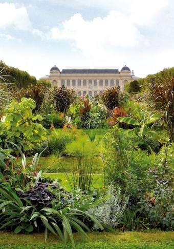 Hôtel Jardin des Plantes - Situation
