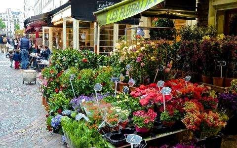 Flea Market on rue Cler Paris 7