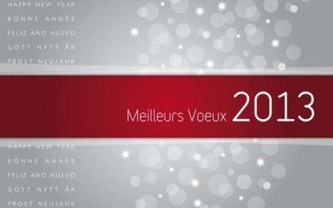 The team of the Grand hotel Leveque wish you all the best for the New Year.