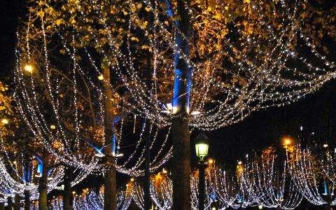 Christmas illuminations in Paris